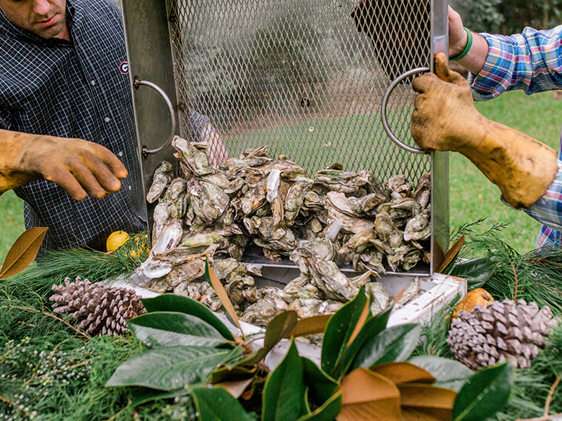 Oyster roast in Savannah, Georgia
